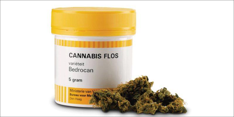 Bedrocan Cannabisblüten