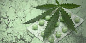 Cannabis Preisaufschlag