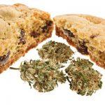 Haschkekse Rezept: So Backt Ihr Eure Eigenen Cannabis Kekse