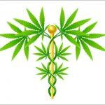 Anwendungsgebiete Von Medizinischem Cannabis