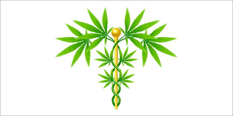 Cannabis Anwendungen
