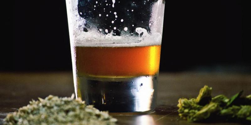 Alkohol Vs Gras
