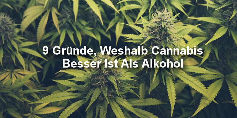 Cannabis In Alkohol