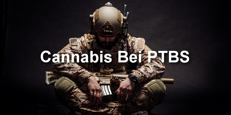 Cannabis bei ptbs