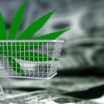 Cannabis Preise In Kanada: Das Zahlt Man!