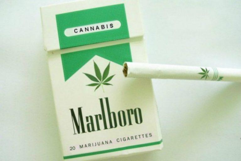 News: Marlboro Wird Der Cannabis Industrie Beitreten