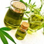 Extraktion: Cannabisöl Fürs Kochen Herstellen