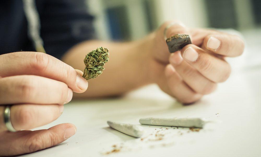 Cannabis und Hasch Unterschiede