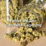Beliebte Fehler Bei Der Cannabis Lagerung, Aufpassen!