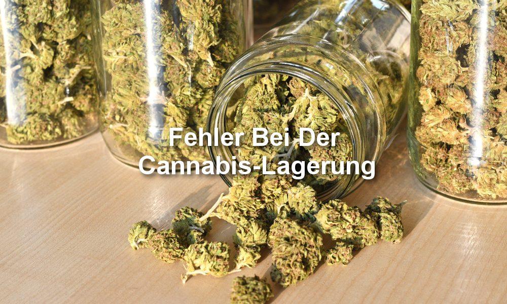 Cannabis Lagerung