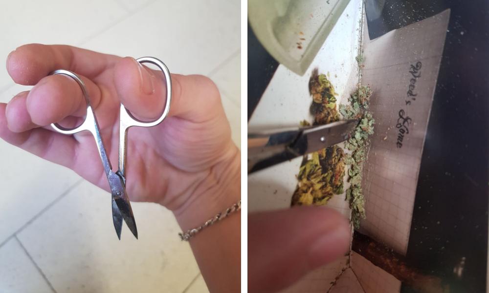 Cannabis mit Schere zerkleinern