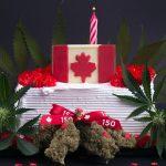 Rezept: Cannabiskuchen Für Partys & Geburtstäge
