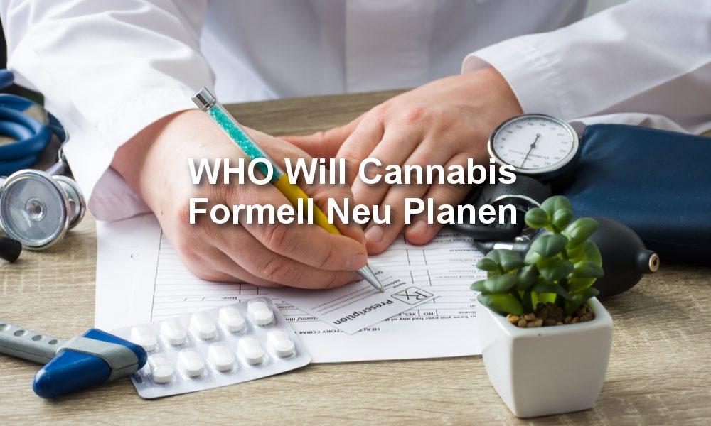 WHO und Cannabis