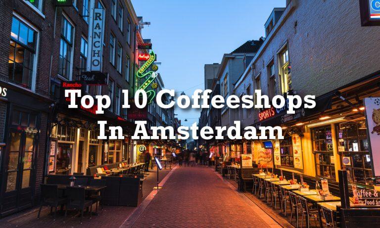 Die Besten Coffeeshops In Amsterdam – Unsere Top 10