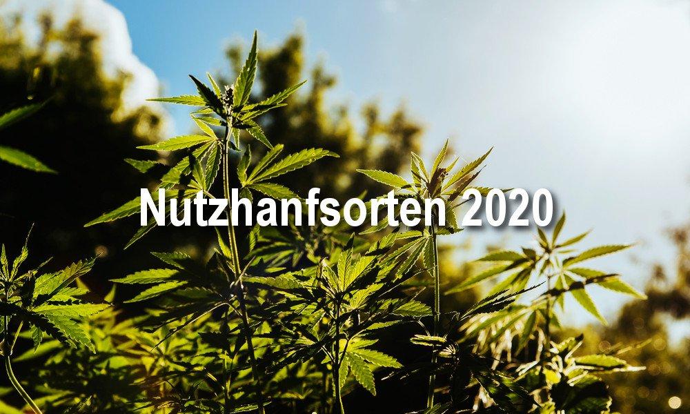 Cannabis Nutzhanfsorten 2020