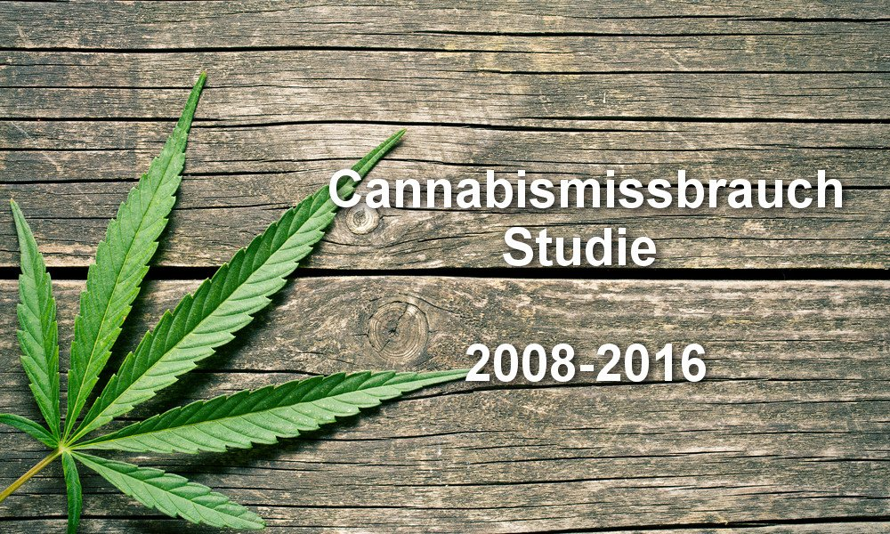 Cannabis Missbrauch Studie