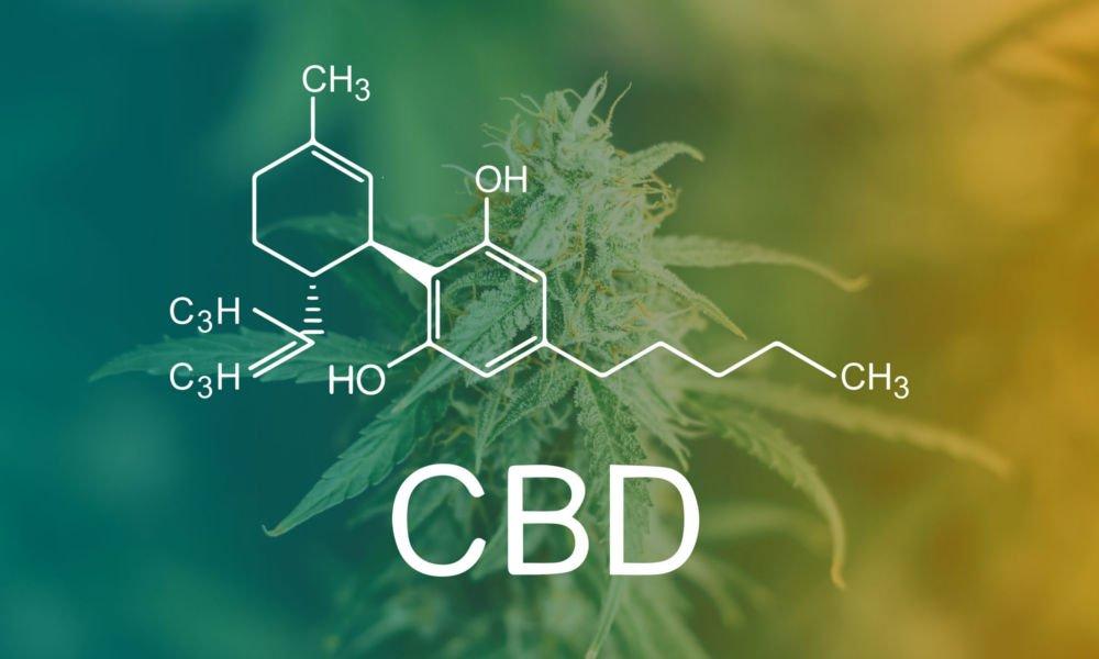 CBD Rauchen – Darreichungsformen & Bioverfügbarkeit